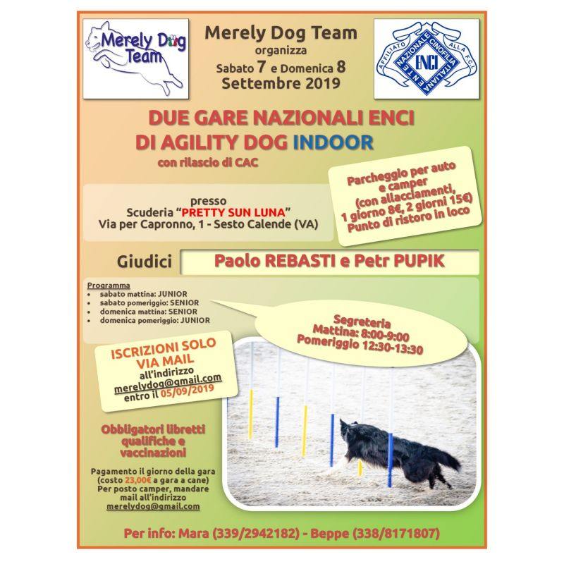 Sabato 7 Settembre Merely Dog Team
