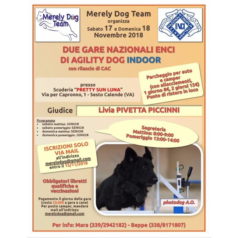 Domenica 18 Novembre Merely Dog Team organizza