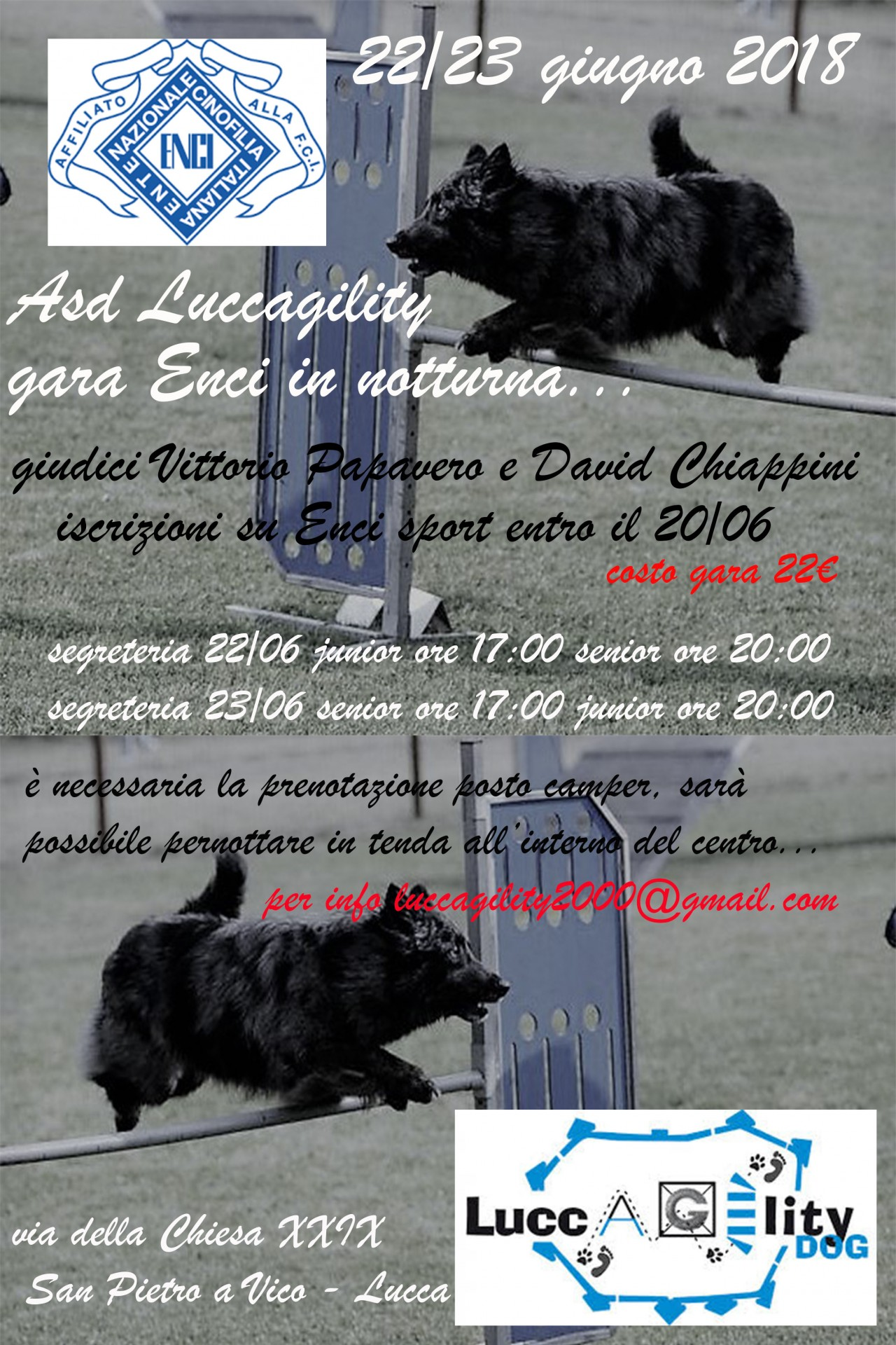 luccagility in nottura..