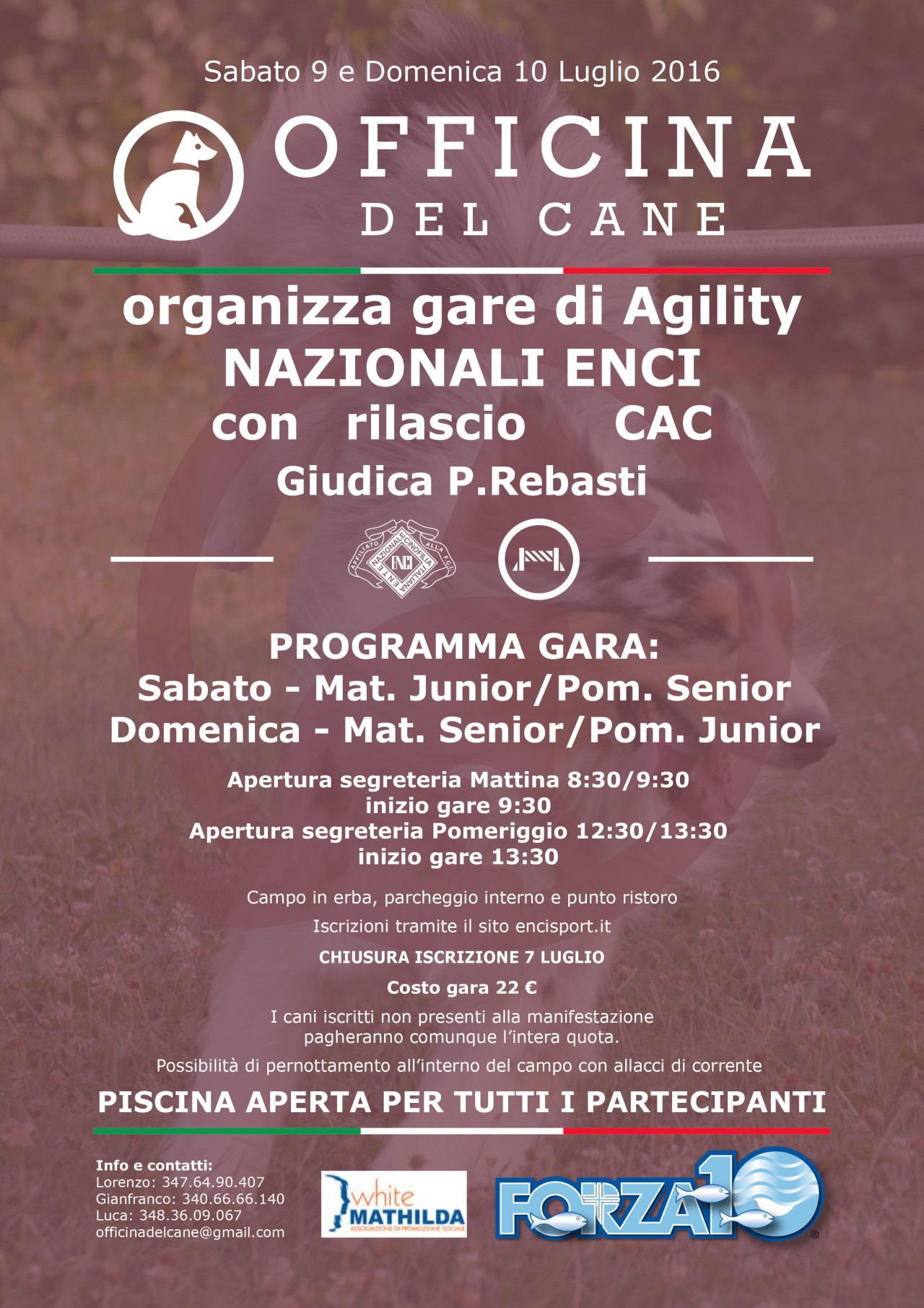 Gara Nazionale Agility Weekend 2.0