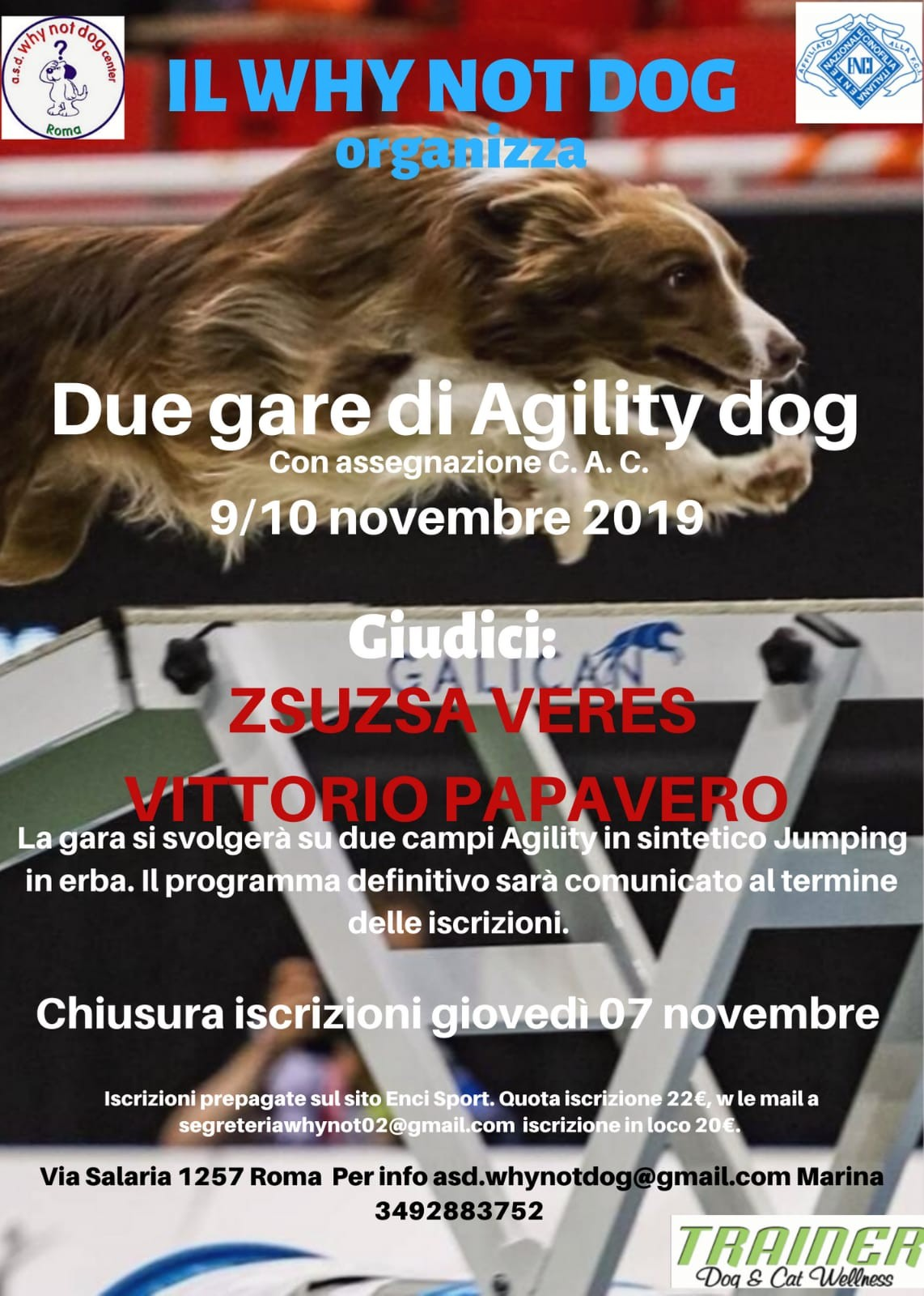 Gara Nazionale di Agility del 9 e 10 novembre 2019