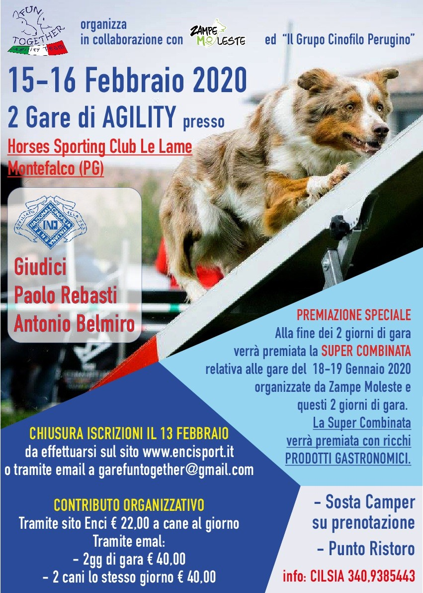 GARA  AGILITY DOG