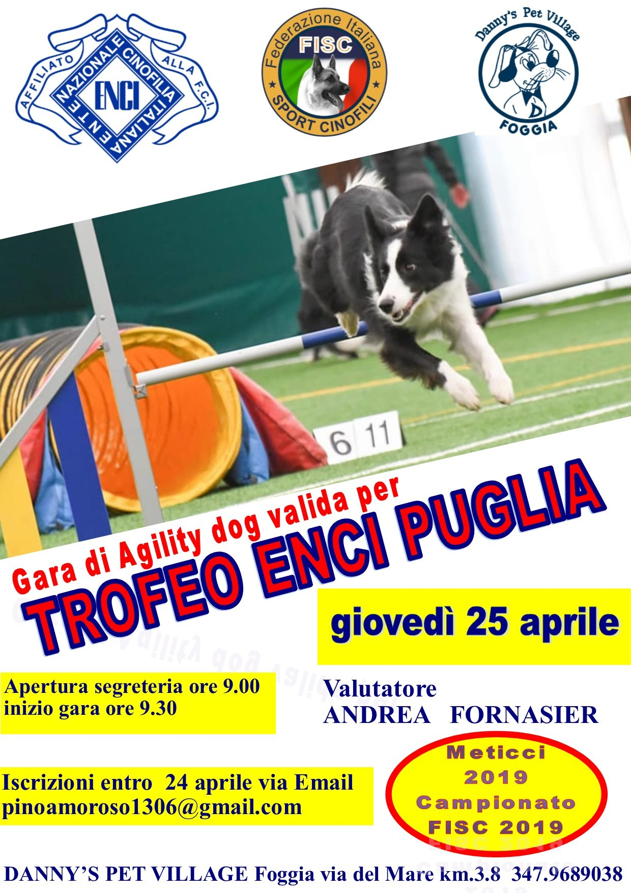 GARA DI AGILITY DOG TROFEO  ENCI PUGLIA