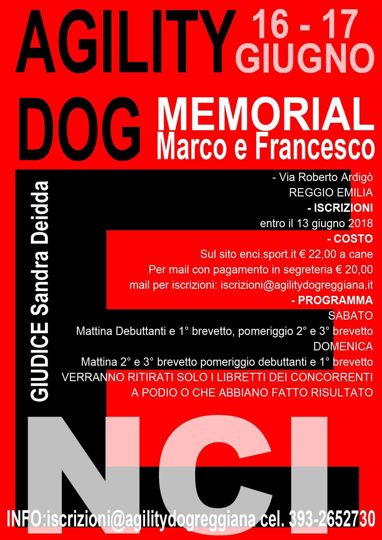Memorial Marco e Francesco 2