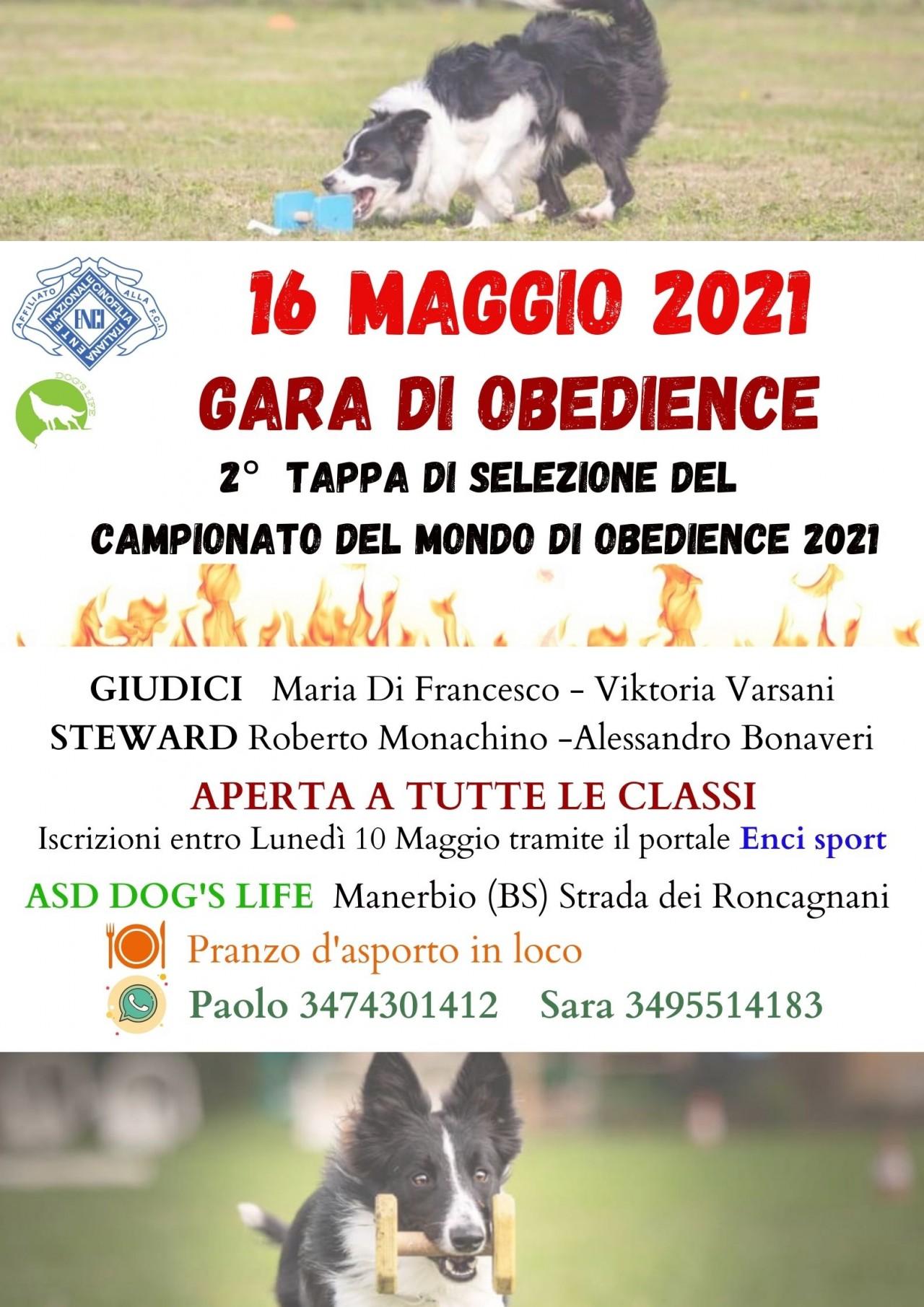 GARA DI OBEDIENCE DOMENICA 16 MAGGIO 2021