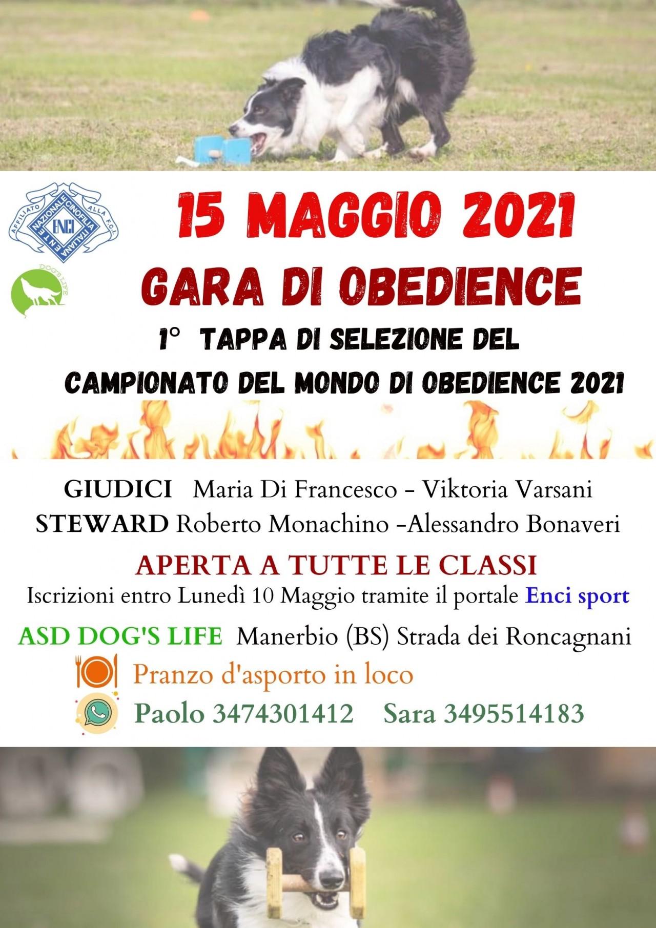 GARA DI OBEDIENCE SABATO 15 MAGGIO 2021