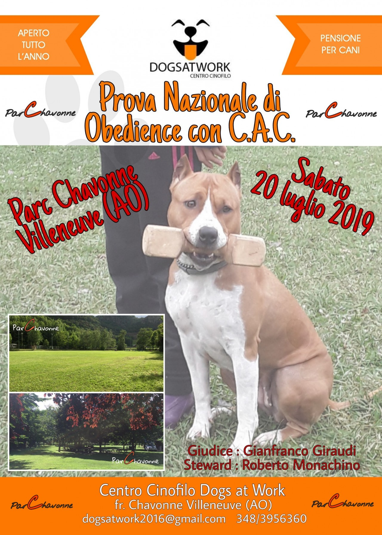 20/07/2019 PROVA DI OBEDIENCE DOGS AT WORK