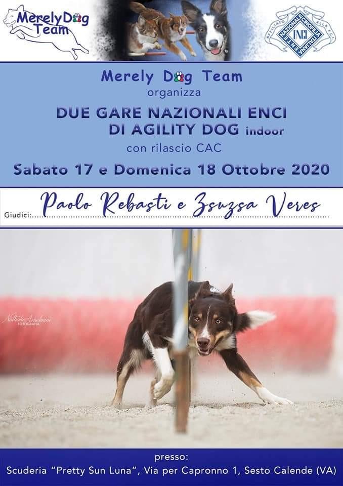 Merely Dog Team 18 Ottobre organizza