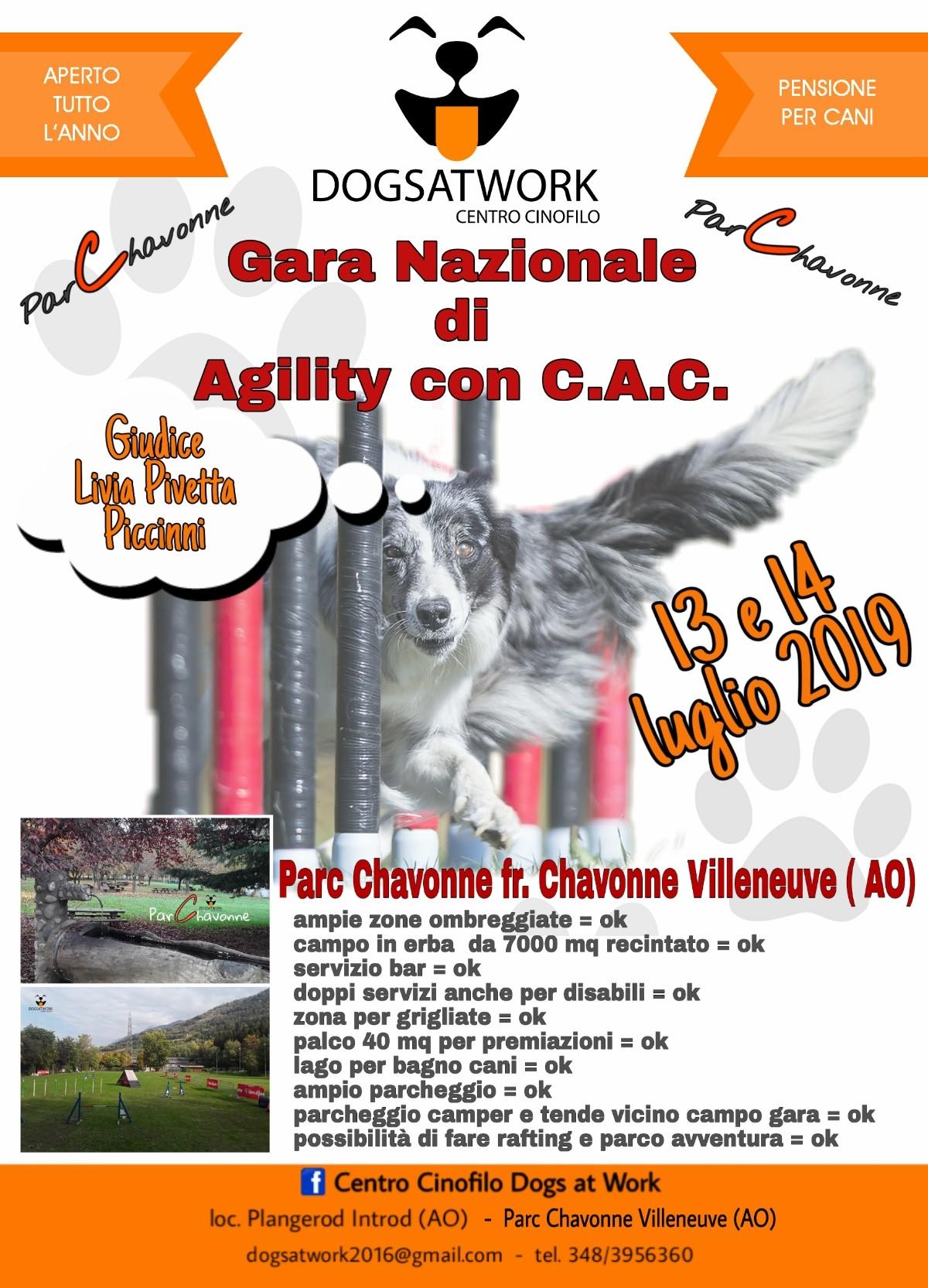 DOGS AT WORK  14 LUGLIO 2019  PROVA NAZIONALE AGILITY