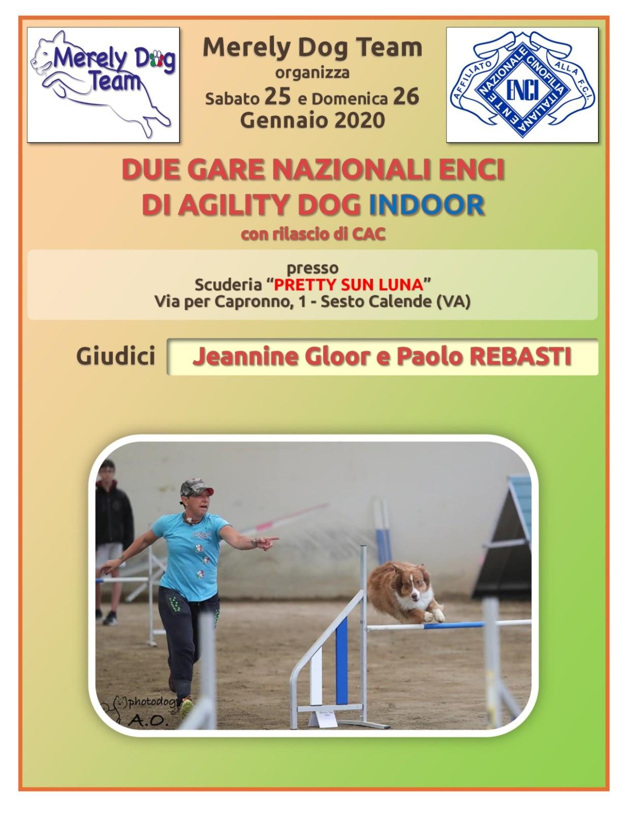 26 Gennaio Merely Dog Team