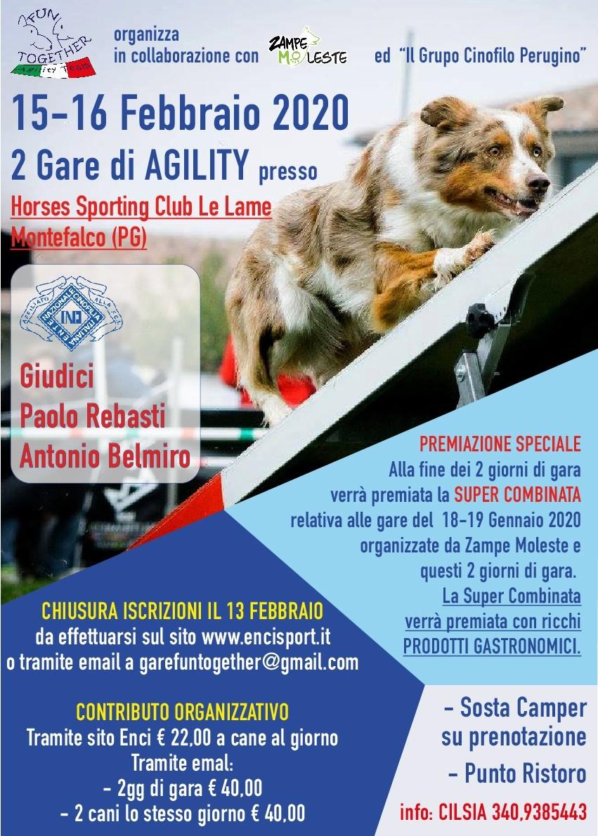 Gara agility dog
