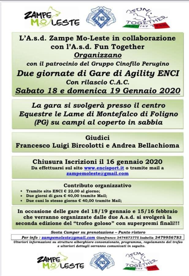 Gara di Agility con rilascio CAC 19-01-2020