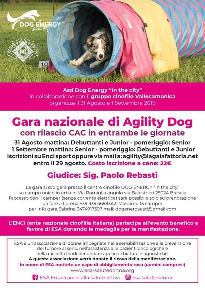 Gara AGility Dog Energy - 31 agosto
