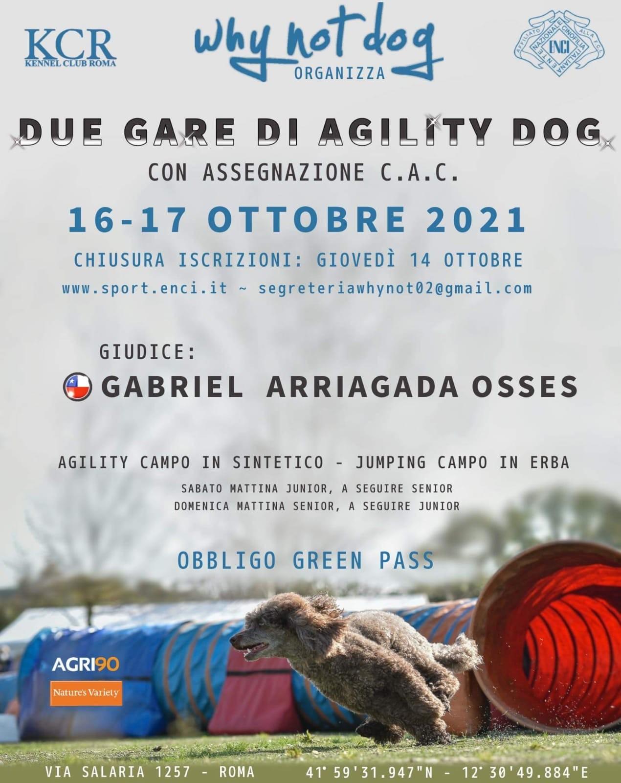 Gara Nazionale di Agility del 16 e 17 ottobre 2021
