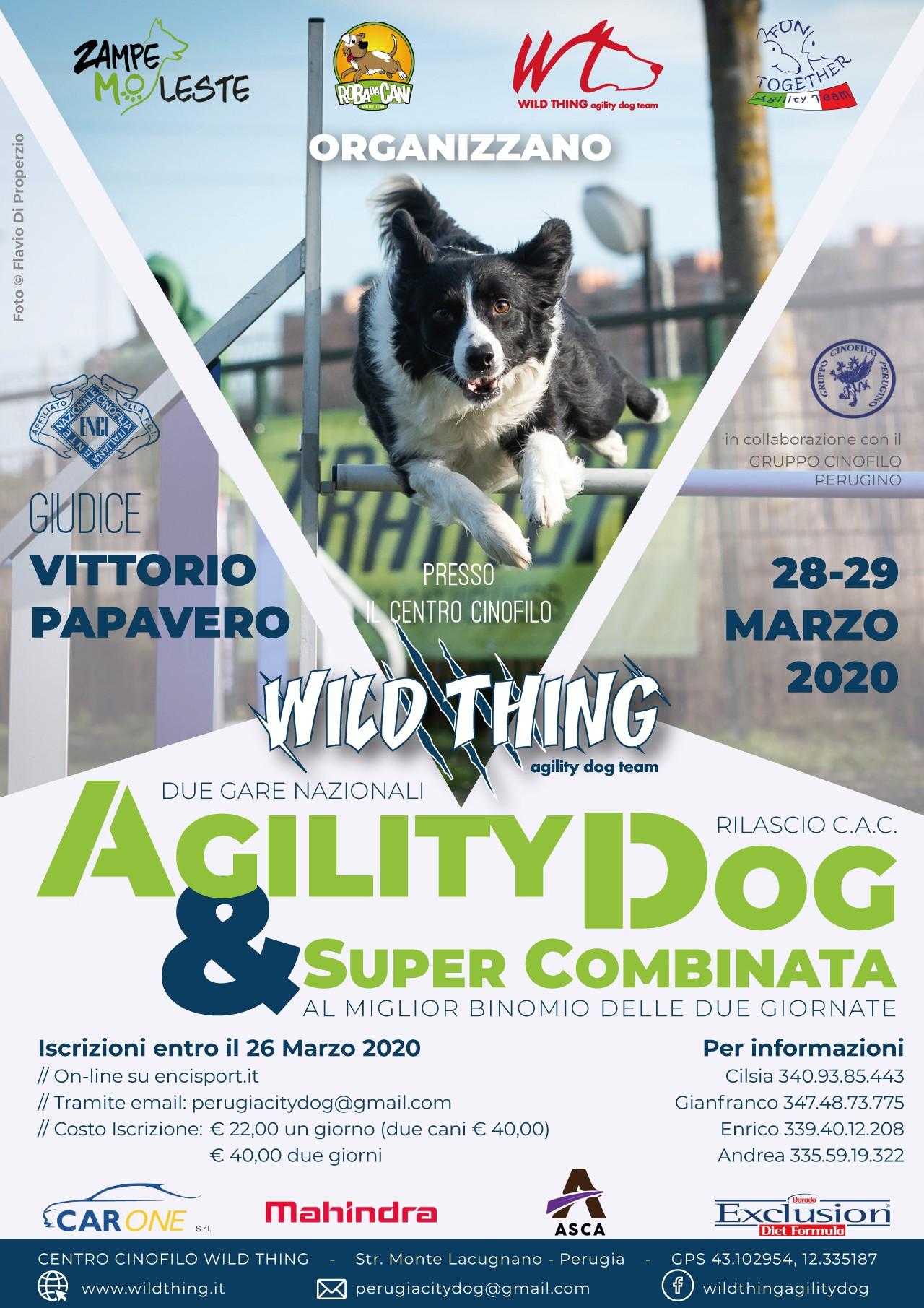 Gara Agility Perugia City Dog 28 e 29 marzo 2020