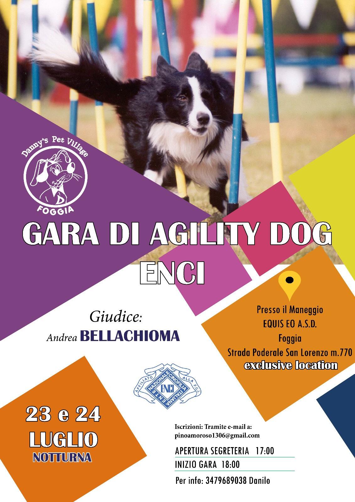 DANNY'S PET VILLAGE FOGGIA GARA AGILITY DOG