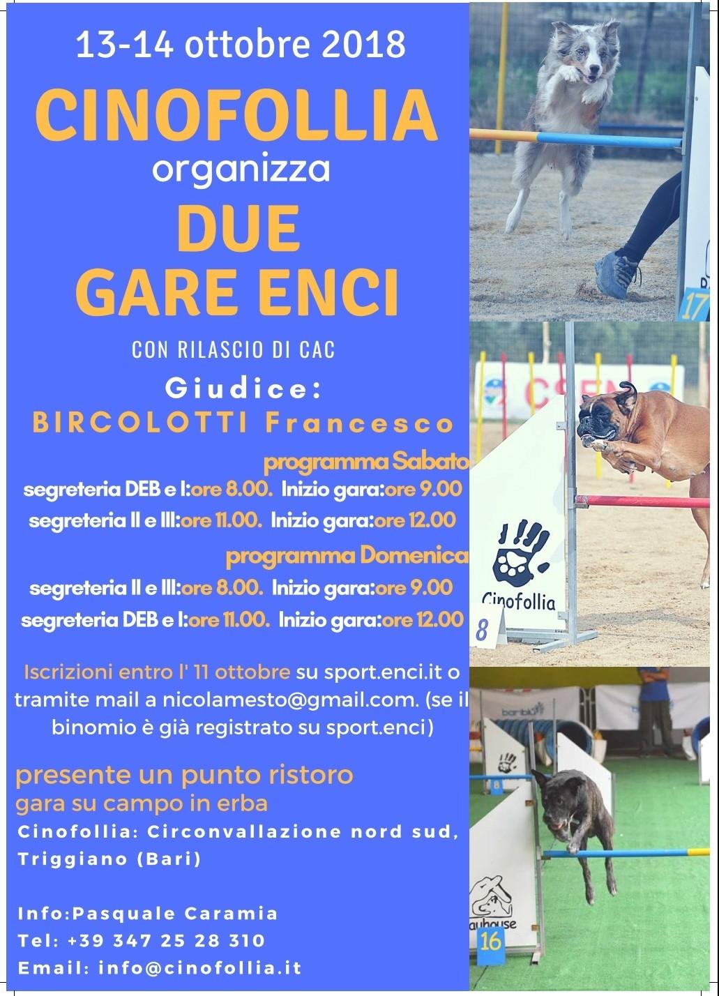 13/10/2018 Gara Nazionale Agility Dog
