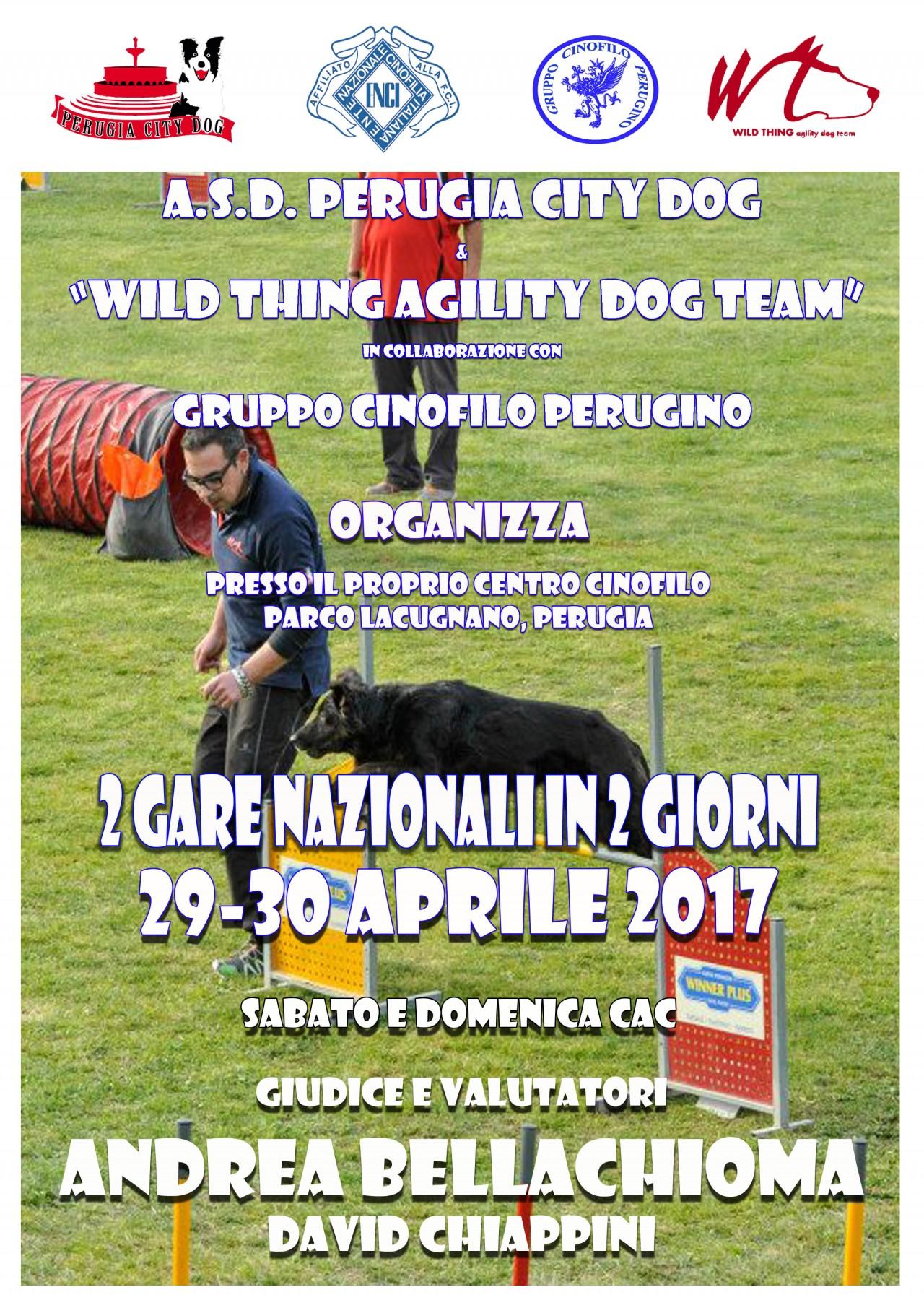 GARA NAZIONALE DI AGILITY DOG 29 aprile