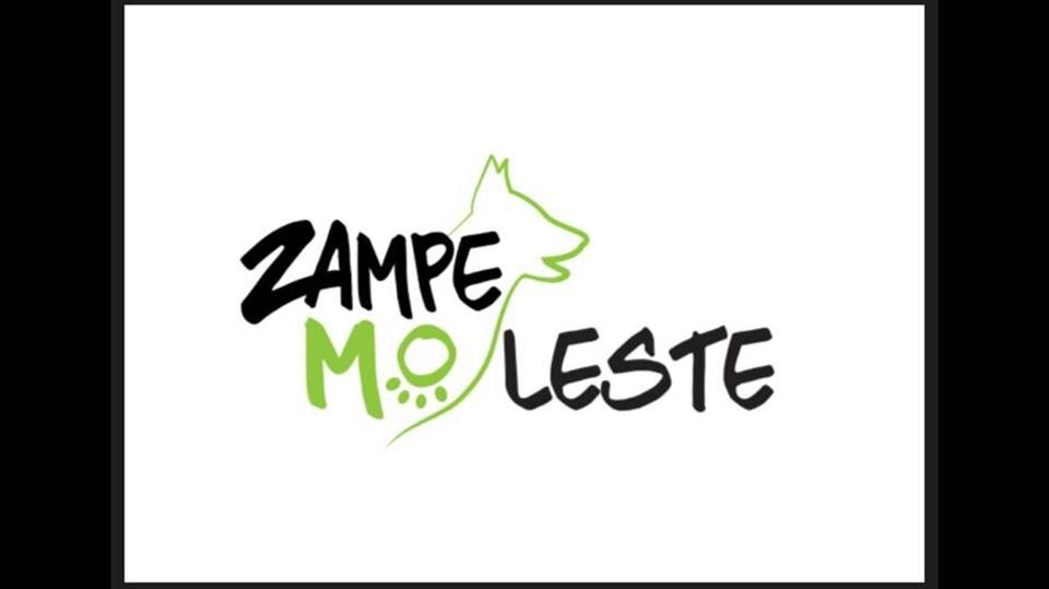 A.S.D. Zampe Mo-Leste