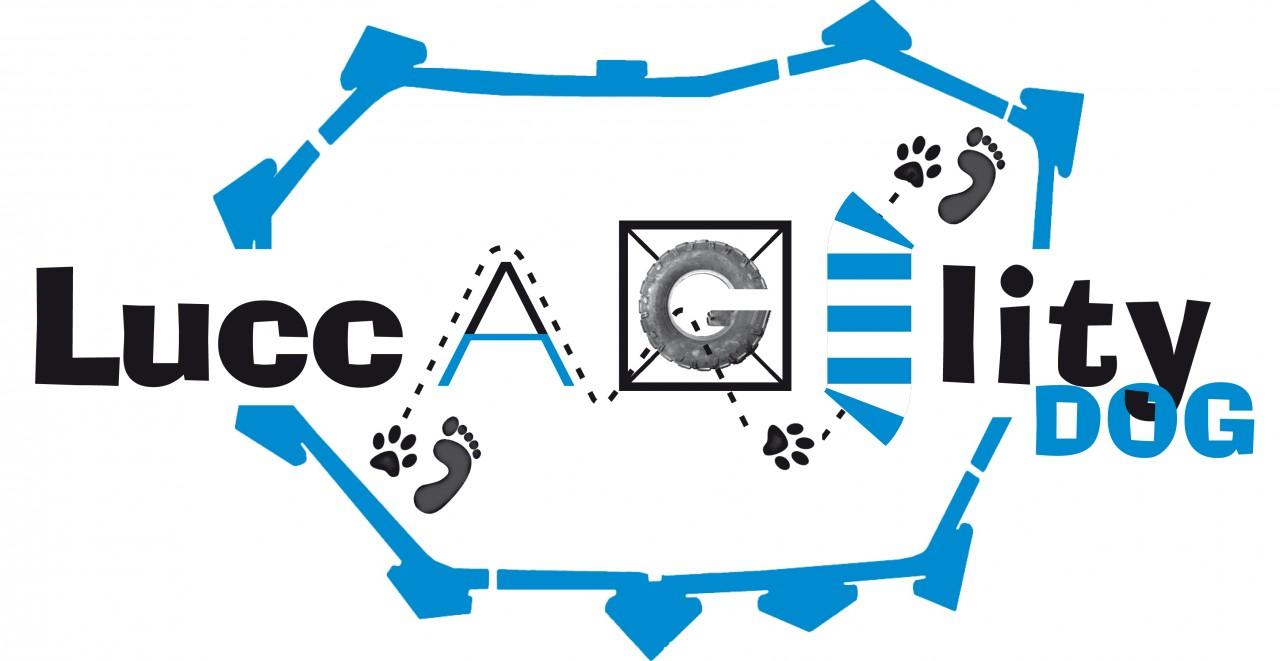 ASD Luccagility Dog